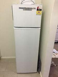 Fridge Fisher and Paykel Victoria Park Victoria Park Area Preview