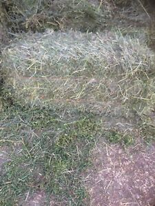 Second cut square bales