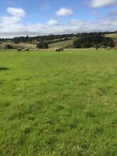 Land for Agistment Wy Yung East Gippsland Preview