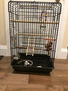 Perfect sized cage , 10/10 condition