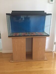 Large fish tank with lid, stand, and accessories