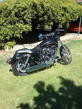 2010  sportster 1200 custom XL 1200c     harley Davidson Girrawheen Wanneroo Area Preview