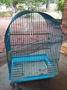 Blue Bird Cage - Free Raymond Terrace Port Stephens Area Preview