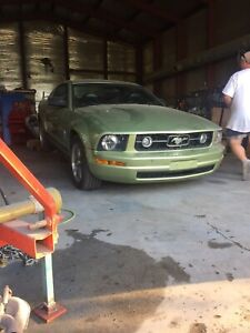 06 mustang motor rebuilt and tranny will be soon to