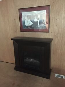 Nice electric fireplace & picture!