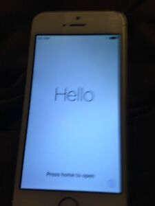 Rogers/fido iPhone 5s 16gb