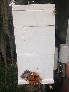 Australian native stingless bee hive Sutherland Sutherland Area Preview