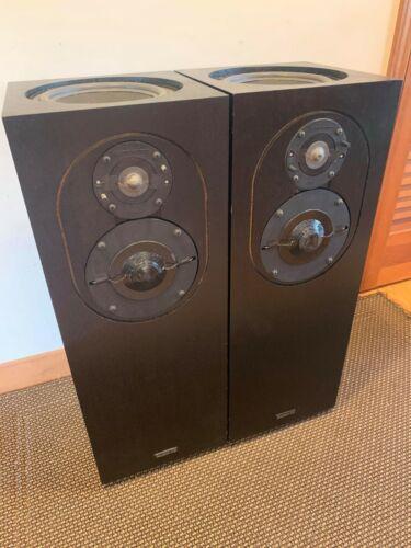 Rare Vintage Allison CD8 Stereo Tower Speakers - Re-Foamed