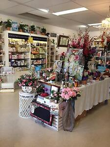 GIFT SHOP BUSINESS FOR SALE Mountain Creek Maroochydore Area Preview