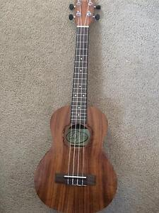 Electric Acoustic Ukulele - Brand New Wallaroo Gungahlin Area Preview