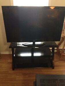 48' LG TV and stand