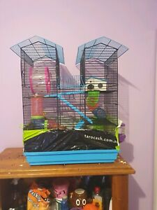 2 x female Mice and cage