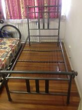 Single Bed Macgregor Brisbane South West Preview