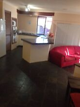 Willetton 4 bed 2 bath home short stay accommodation Willetton Canning Area Preview
