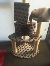 Cat tower for sale Belconnen Belconnen Area Preview