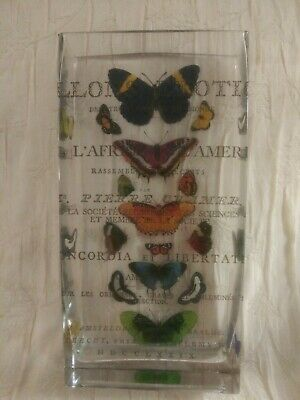 Exotic Butterflies / Papillons Exotiques Rectangular Glass Vase - French (Glass Rectangular Vase)