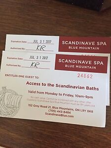 Two Scandinave Spa Weekday Passes