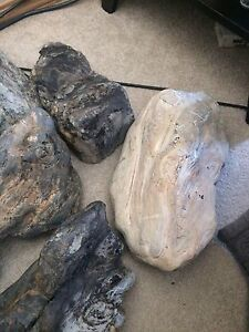 Petrified wood great for fishtanks landscaping decorations.