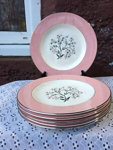 6 x Homer Laughlin (USA) CAVALIER Eggshell Dinner Plates 10 inch