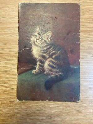 Antique Picture Postcard Panel Greeting Card Christmas 1913 Cat Kitten ()
