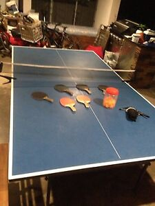 Ping pong table Palm Beach Gold Coast South Preview