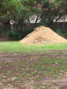 Free mulch free mulch Allawah Kogarah Area Preview