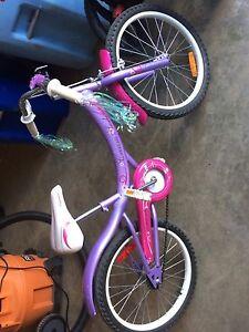 Kids bike ages 5-8