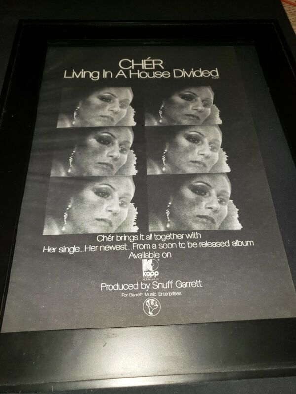 Cher Living In A House Divided Rare Original Promo Poster Ad Framed!