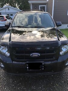2011 Ford Escape XLT with Canadian Comfort Package