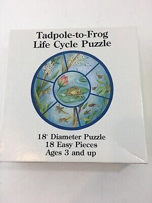 "Frog Life Cycle Jigsaw Puzzle Tadpole To Frog 18"" Diameter 18 Pieces Ages 3+"