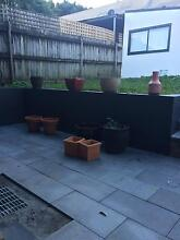 Garden pots Leichhardt Leichhardt Area Preview