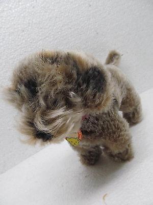 MES-38938 Alter Steiff Hund Raudi H:ca.17cm mit Schild,