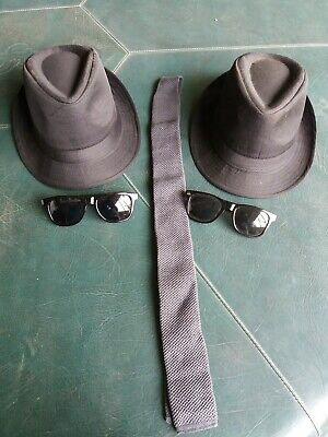 Blues Brothers Halloween (Halloween Costume Blues Brothers Hats Sunglasses)