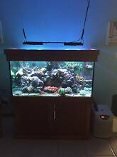 Marine Tank Complete Setup (Hardware only) Calamvale Brisbane South West Preview