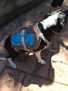DOG BACKPACK GENUINE CESAR MILAN 2 AVAILABLE $30 EACH Southport Gold Coast City Preview