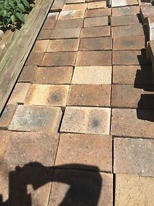 Outdoor pavers Barnsley Lake Macquarie Area Preview