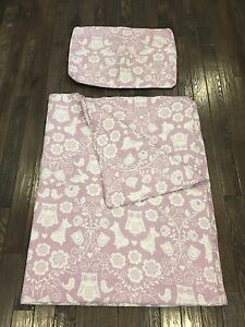 LIKE NEW Quilt and pillow case for twin bed ( girl )