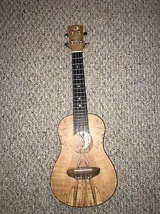 Luna ukulele spalt maple