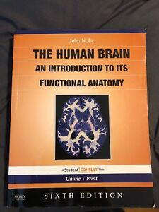 WTS: The Human Brain by Nolte