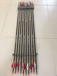 10 x LINKBOY carbon arrows Beaudesert Ipswich South Preview