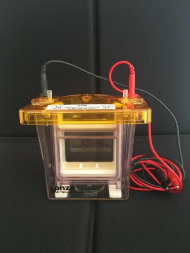 Lonza Protein Gel Electrophoresis apparatus