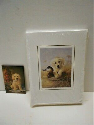 20 Golden Retriever Puppy Note Cards with Envelopes  and Magnet HOW CUTE! Golden Retriever Note Cards