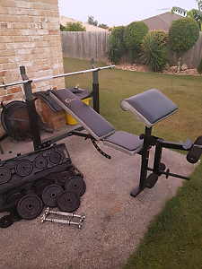 CELSIUS WEIGHT bench+weights and bars Regents Park Auburn Area Preview