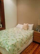 Queen Chiro Osteo Support Bed and BoxSpring - Gently Used Coogee Eastern Suburbs Preview