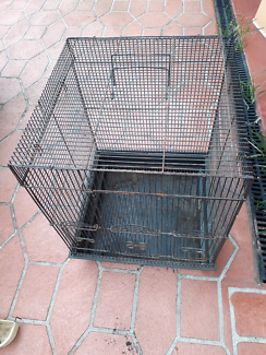 Bird Cages Bird Aviary Amp Pet Birds For Sale Gumtree