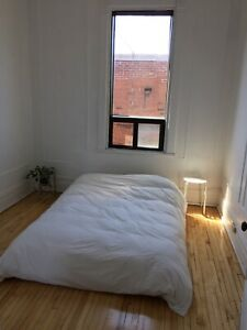 2 month Sublet March 1 - May 1 ~ Plateau Mile End