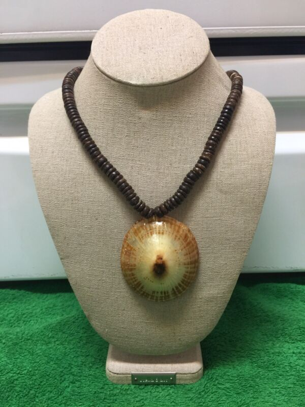 Shell Opihi Shell Necklace