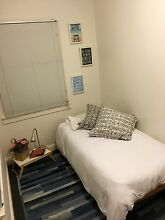 Nice and cozy single room 2 min from Bondi Junction Bondi Eastern Suburbs Preview