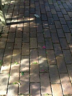 PGH 50mm Pavers Petersham Marrickville Area Preview