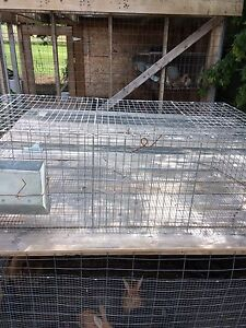 Rabbit cages, rabbit nesting boxes, rabbit cage watering line.